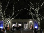 O Christmas Tree…