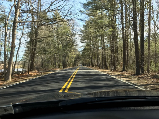 View of two-lane road through woods.