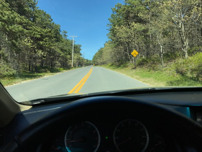 Photograph of empty two-lane road on Cape Cod, with car's dashboard in foreground.