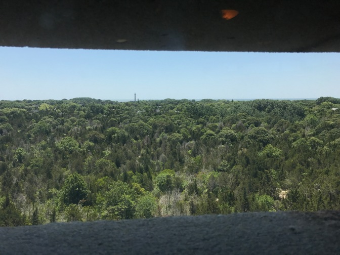 View of the Cape May Lighthouse and a forest, from the top of Fire Control Tower 23.
