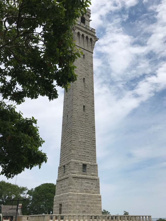 View of Pilgrim Monument. A tree branch is in the foreground.
