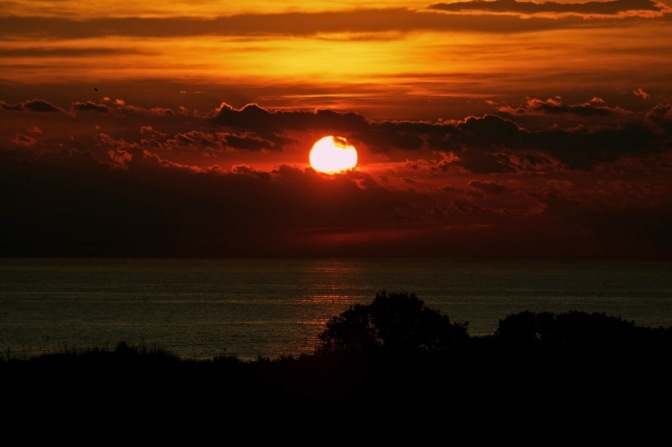Sunset photograph over the Atlantic Ocean. Trees, in silhouette, are in the foreground.