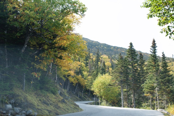 The Auto Road. Tree leaves along the roadside are beginning to change color.