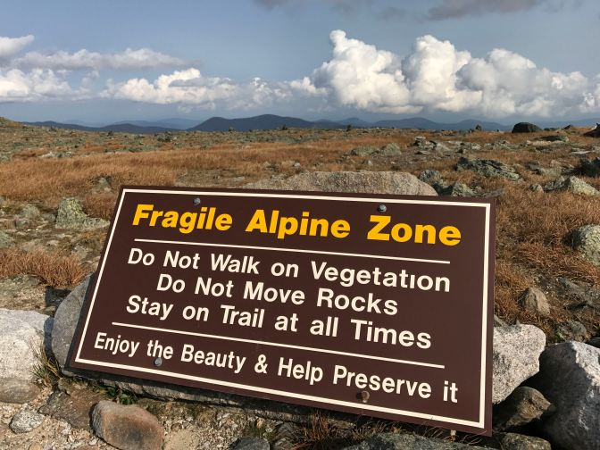 "Large sign that says ""Fragile Alpine Zone: Do Not walk on vegetation do not move rocks stay on trail at all times. Enjoy the beauty & help preserve it."""