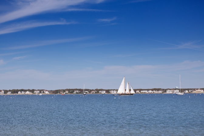 Photo of sailboat on Hyannis Harbor.