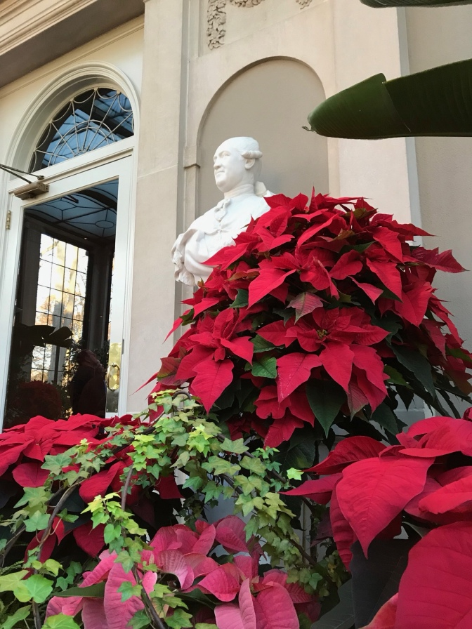 In the foreground, poinsettias. A statue of a man is in the background.