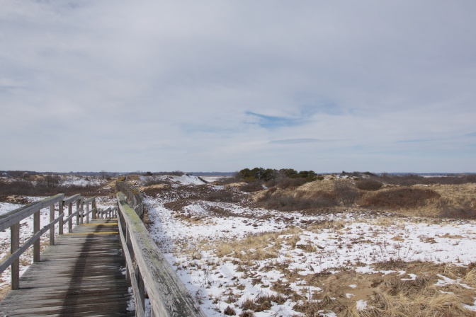 Boardwalk leading over the dunes to the beach.