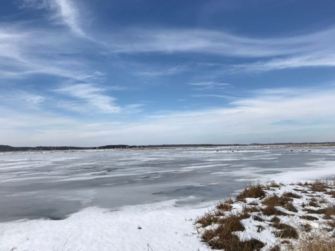Frozen salt marshes.