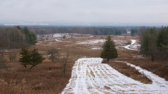 View of Saratoga Battlefield.