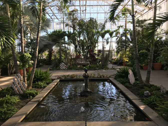 Indoor view of greenhouse, with a fountain and pool in the foreground and palm trees around the building.