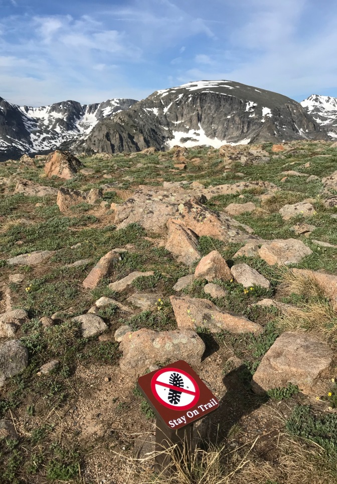 Mountains in distance with rocky ground below. A sign has a boot print with a line through it, and says STAY ON TRAIL.
