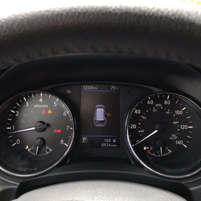 Car dashboard with diagram of car with door open on display panel between odometer and speedometer.