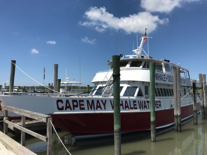 Cape May Whale Watcher ship tied up at a pier.