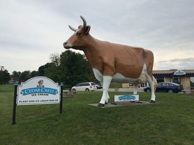 Large cow statue outside Cedar Crest Ice Cream shop.