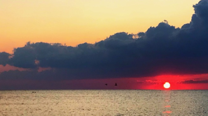 Sunset over ocean with birds in distance.