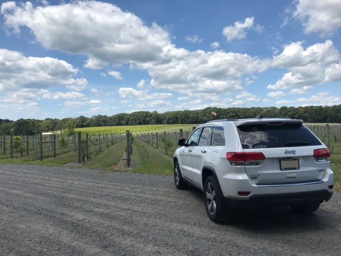 White Jeep Grand Cherokee in front of vineyard, with blue skies and clouds in distance.