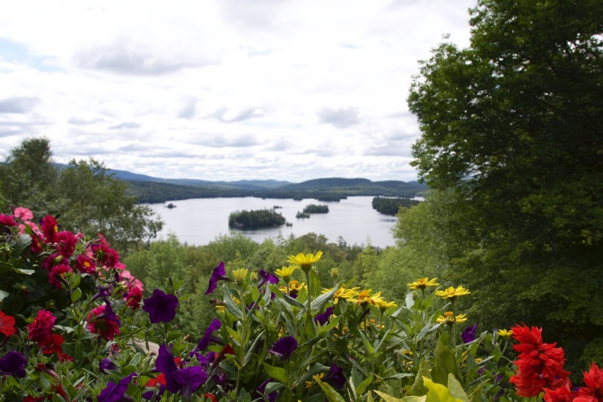 Blue Mountain lake in background with flowers in foreground.