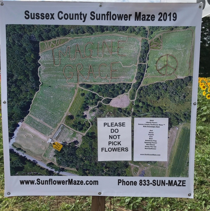 Map of Sussex County Sunflower Maze 2019 - Map shows that maze is in shape of words IMAGINE GRACE and a peace symbol.