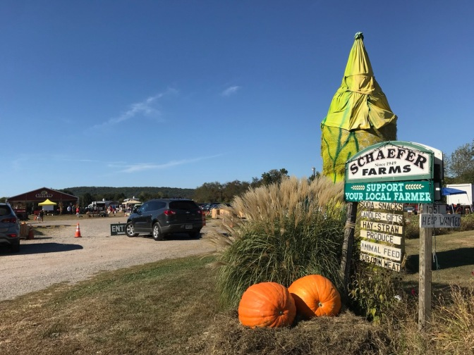 Entrance to Schaefer Farms, with autumn decorations and pumpkins in foreground.