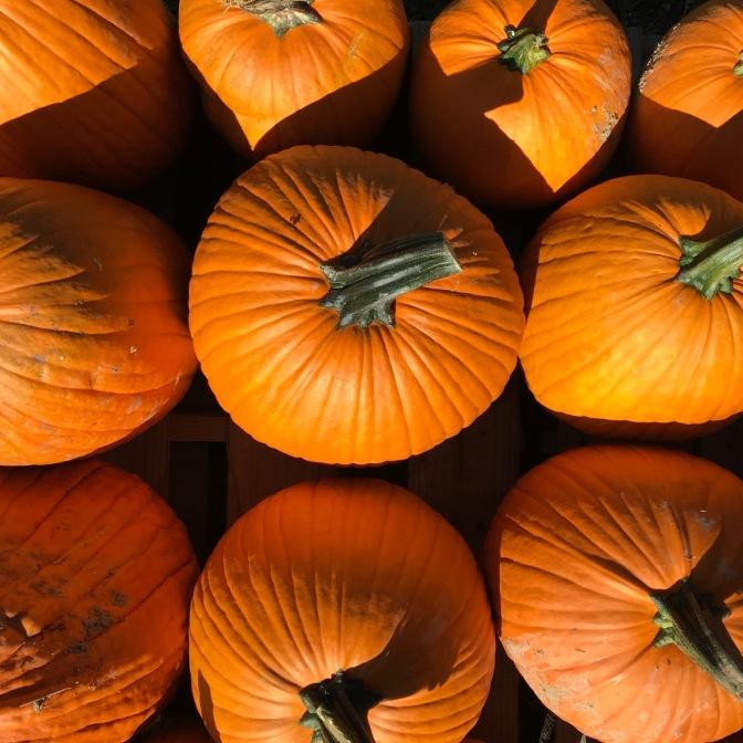 Pumpkins in a box.