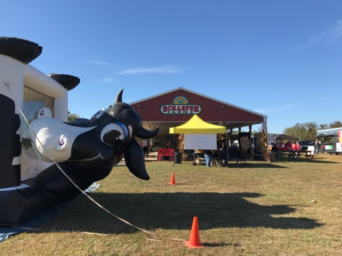 Cow-themed air bounce castle, with Schaefer Farms pavilion in background.