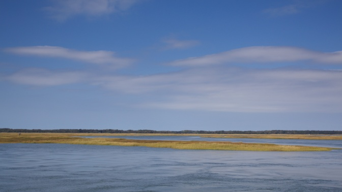 View of coastal wetlands and marshes, with blue skies in the background.