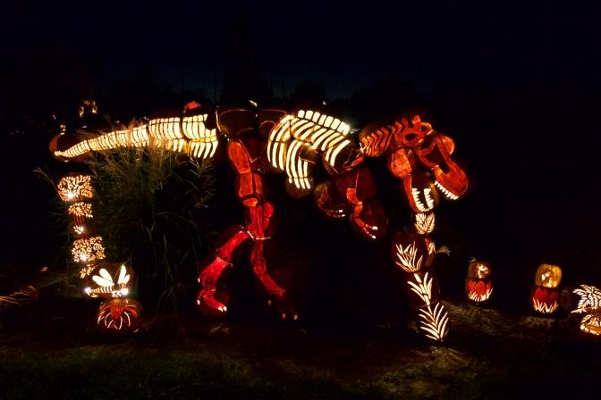 Tyrannosaurs Rex made of pumpkins.