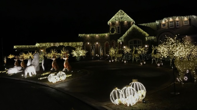 House covered in numerous decorations, with decorative reindeer, polar bears, nutcrackers, and foxes in front yard.
