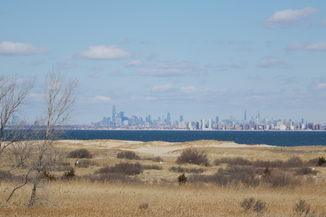 View of Manhattan skyline with bay and beach in foreground.