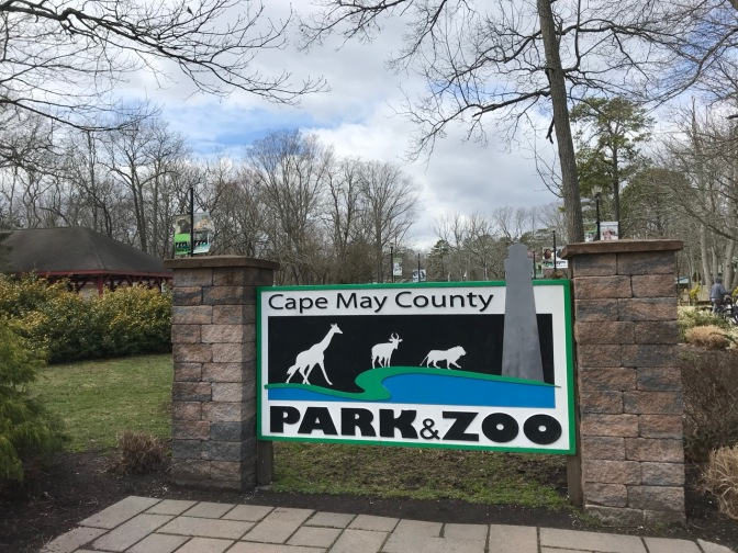 Entrance sign for Cape May Zoo that says CAPE MAY COUNTY PARK & ZOO.