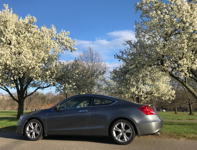 2012 Honda Accord in front of blooming trees.