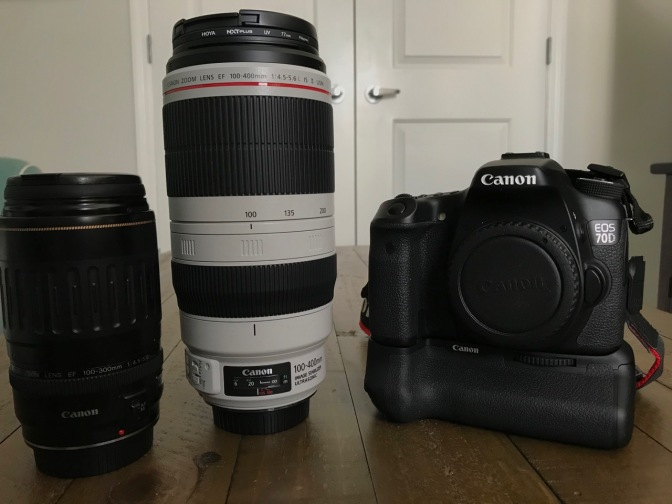 Canon 100-300mm lens, Canon 100-400mm lens, and Canon EOS-70D camera body.