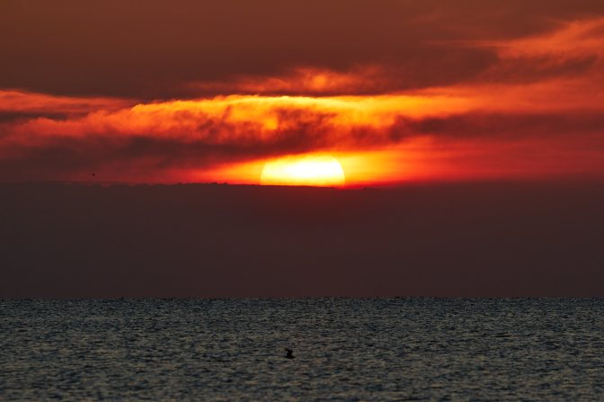 Setting sun over ocean.