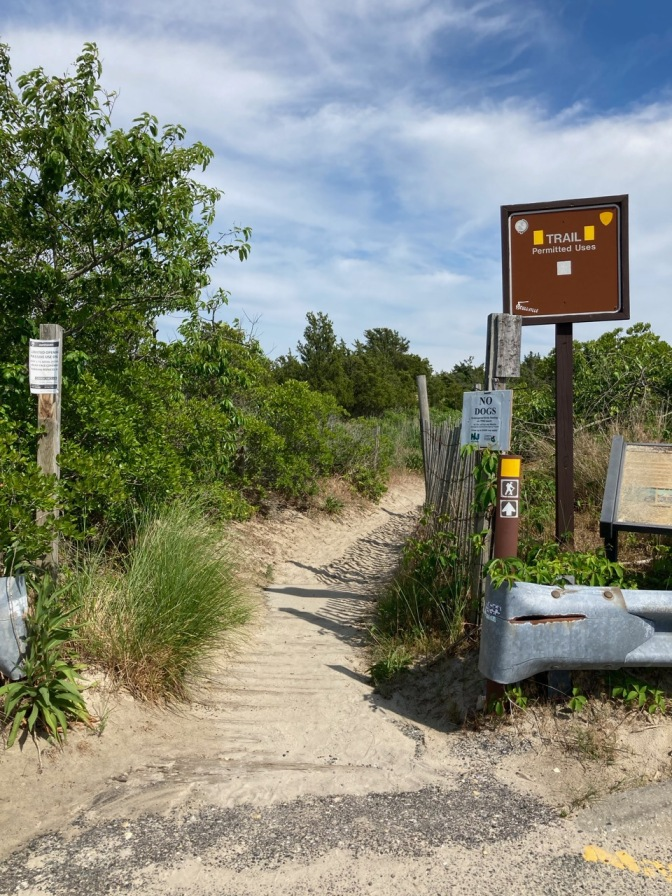 Trailhead at Corson's Inlet State Park, with a sandy path leading into the woods.