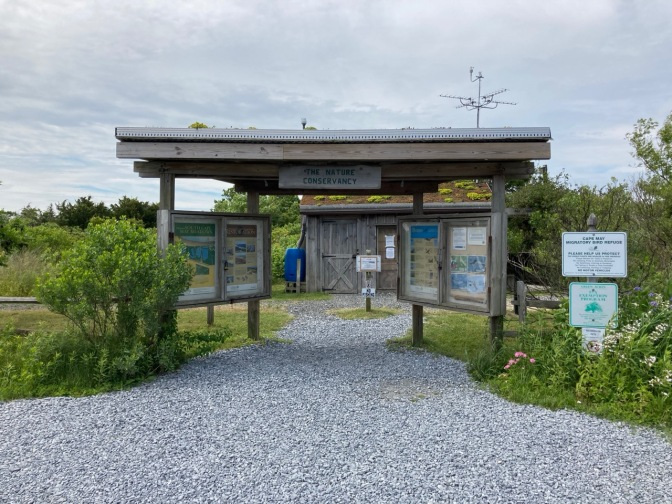 Nature Conservancy entrance - a wooden pagoda - to Cape May Meadows.
