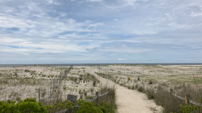 Path to beach through dune, with both sides of path lined with metal fences.