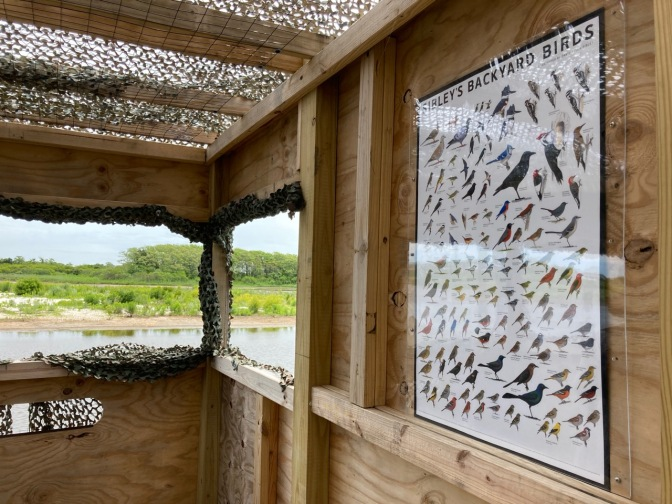 Interior of blind, with birding guide on wall.