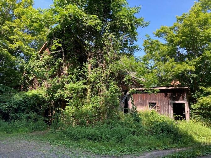 Abandoned barn along side of road in Delaware Water Gap.