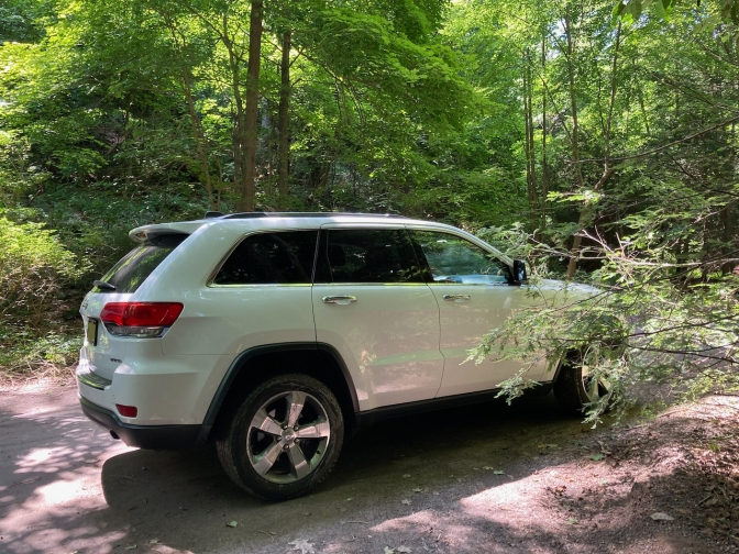 2014 White Jeep Grand Cherokee, parked among trees in gravel lot.