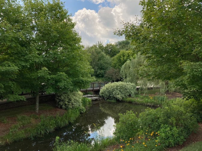 Stream and garden with bridge over stream.