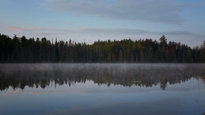 Tree-lined shore of Quiver pond reflected in misty lake.