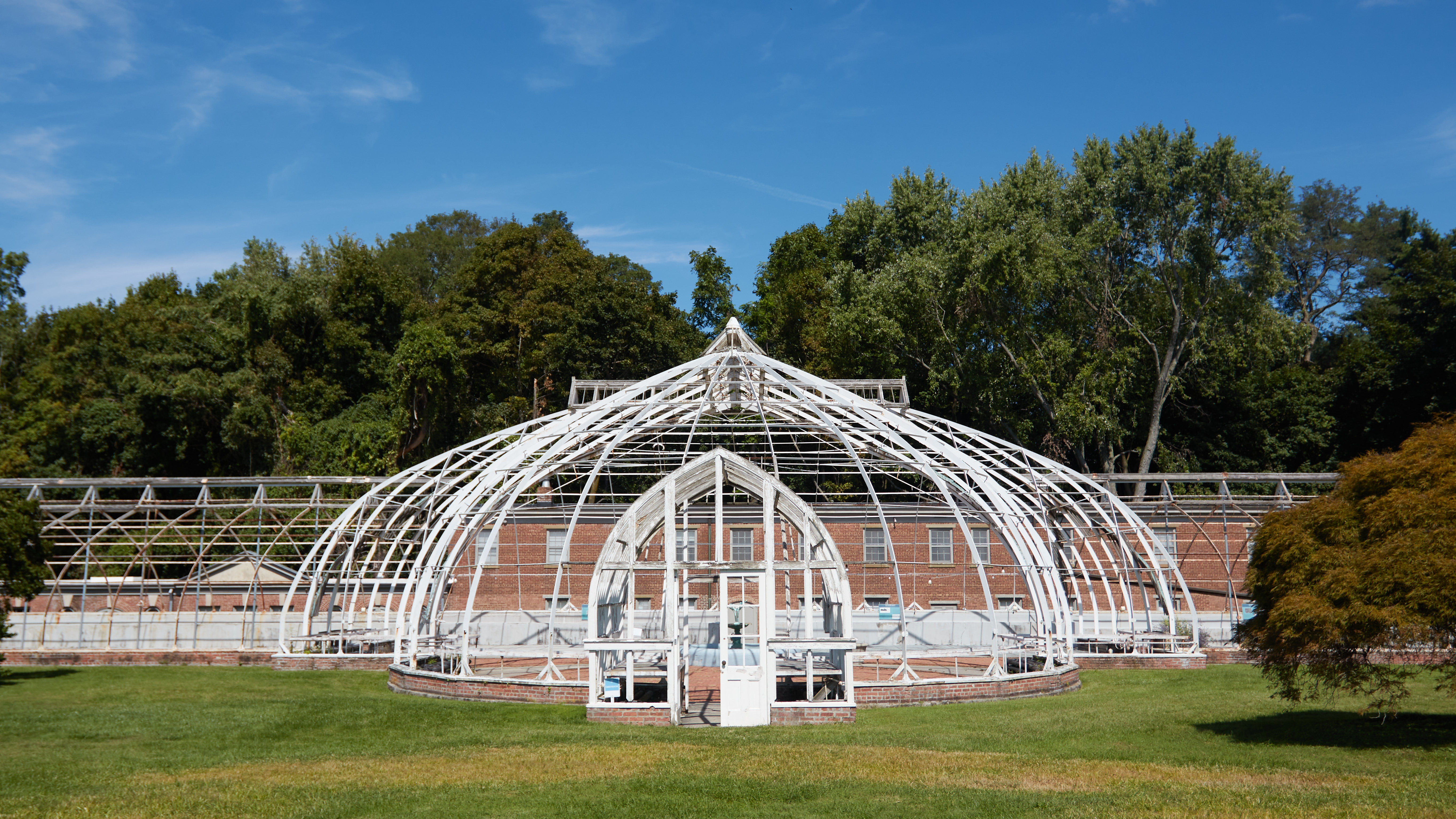 Greenhouse conservatory, now just a metal wire structure.