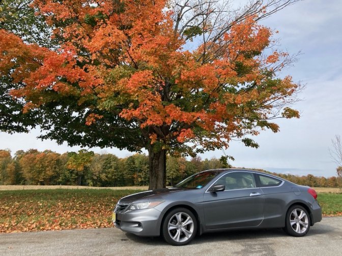 2012 Honda Accord parked in front of tree with red leaves.