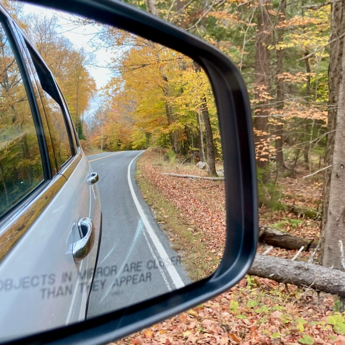 Yellow and green trees in rear view mirror of car.