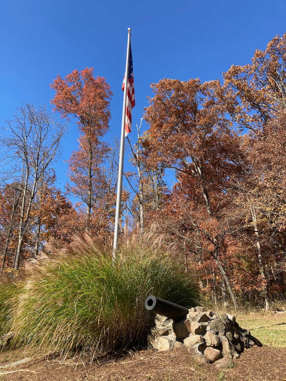 Flag and cannon in front of tree line.