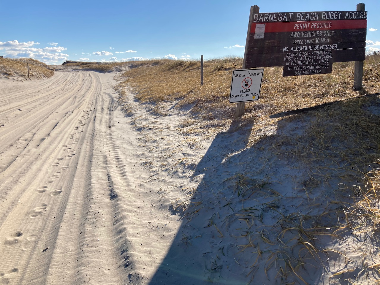 Sand road, with sign beside road that says BARNEGAT BEACH BUGGY ACCESS PERMIT REQUIRED 4WD VEHICLES ONLY SPEED LIMIT 10 MPH.