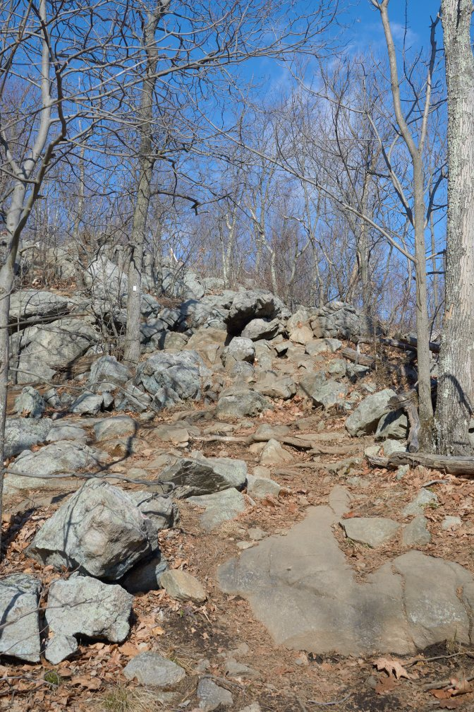 View of rocky hillside, with trees in the distance.