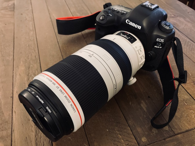 Canon EOS 5D Mark IV with 100-400mm lens on wooden table.