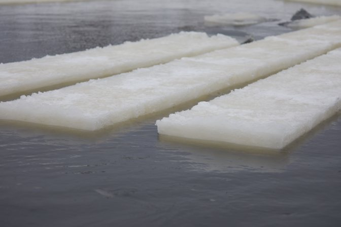 Ice blocks floating on water.