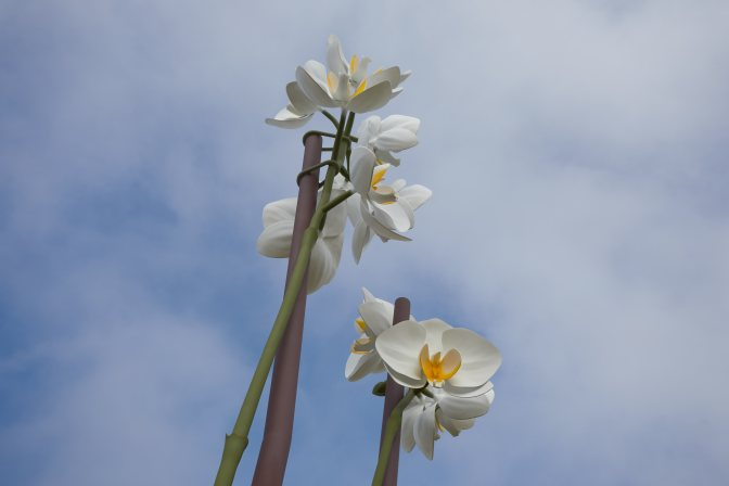 Two orchids sculpture, against blue sky.